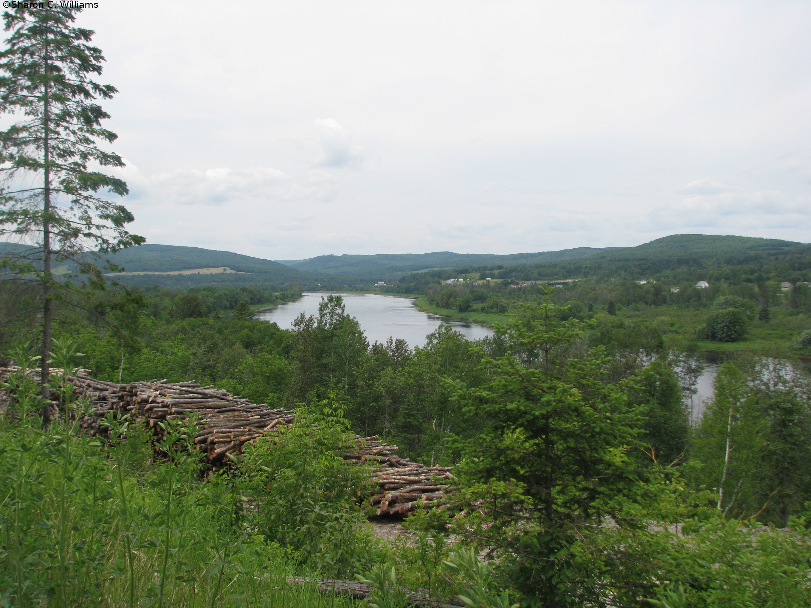 Northern Maine   The Musings of A New Englander